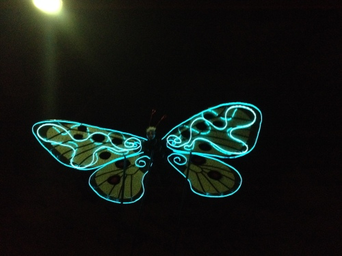 Once the sun goes down, the butterflies take on a new look as they swirl at the margin of the audience.