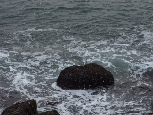 The ocean seems especially restless every winter.