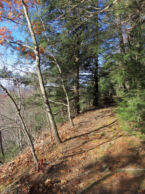 A lovely trail follows the crest of Pocumtuck Ridge.