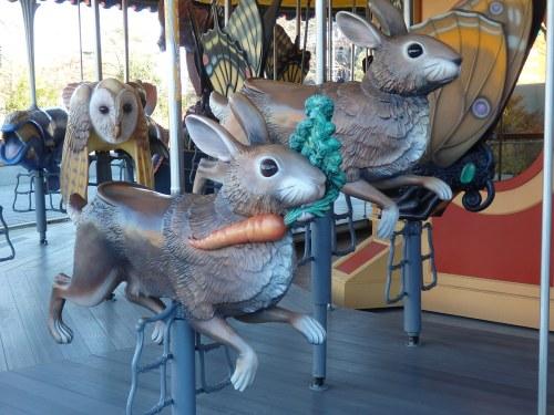 Rabbit,run!