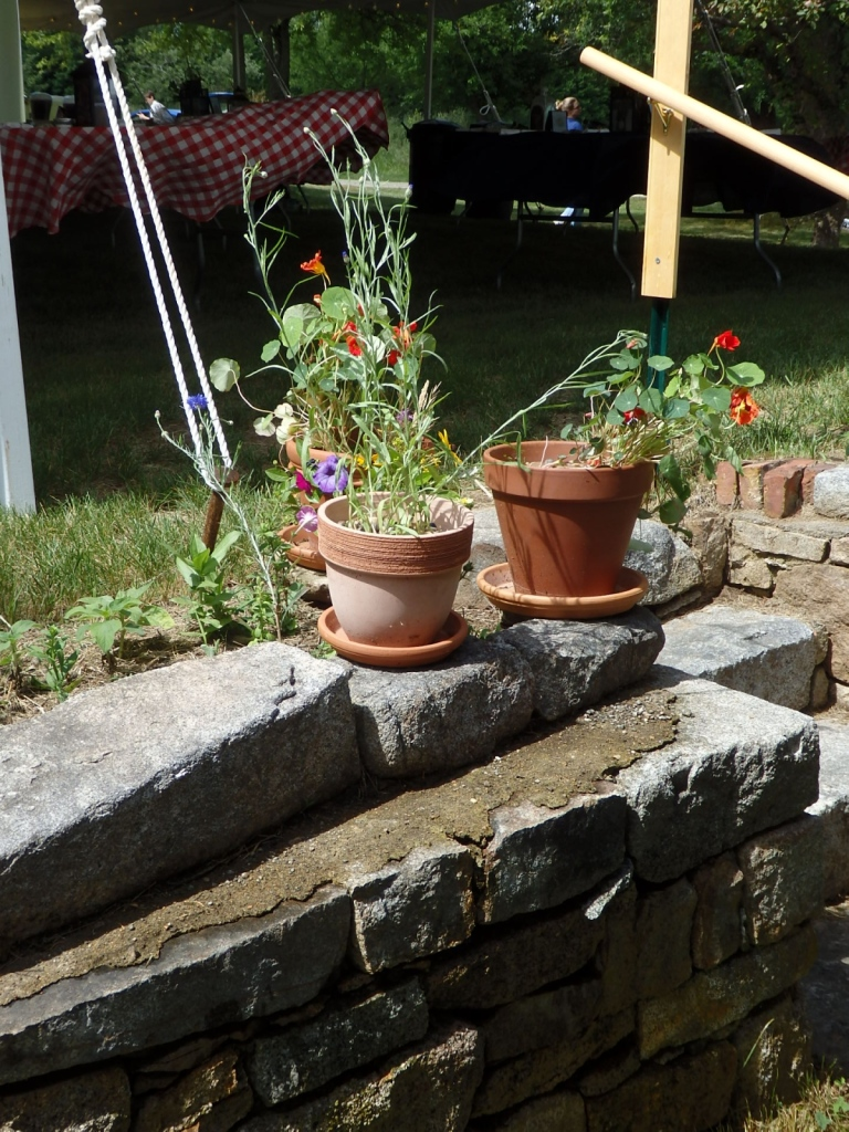 Doesn't everyone have a stone wall for the pots?